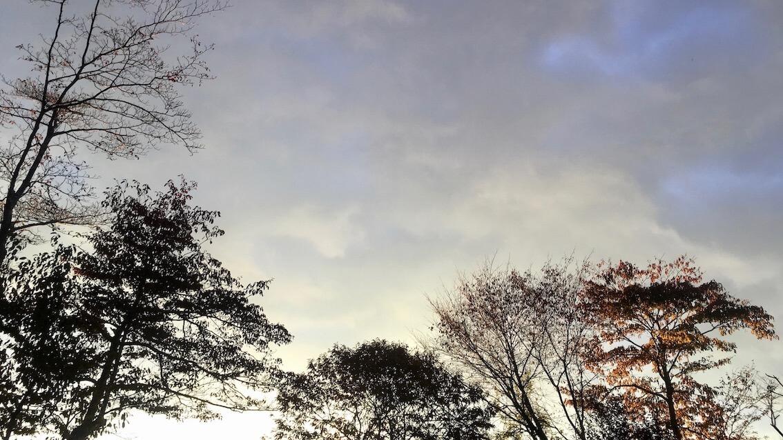 軽井沢暮らし
