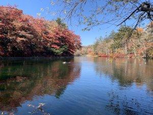 軽井沢の紅葉ー雲場池