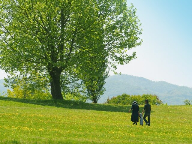 advantages and disadvantages of living with children in karuizawa